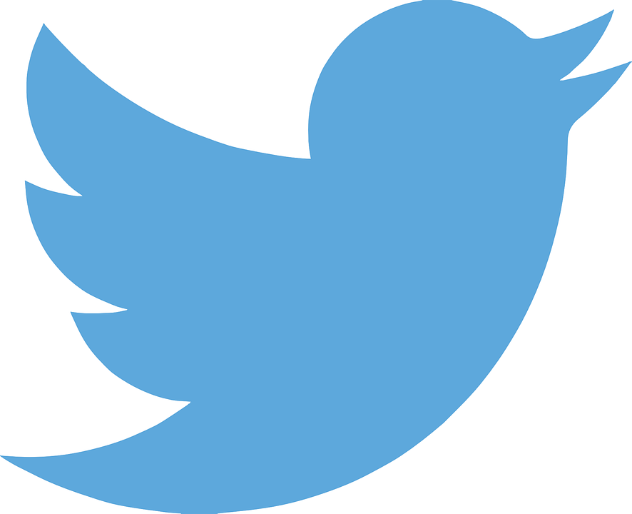 Twitter, ทวีต, Twitter นก, เครือข่ายทางสังคม